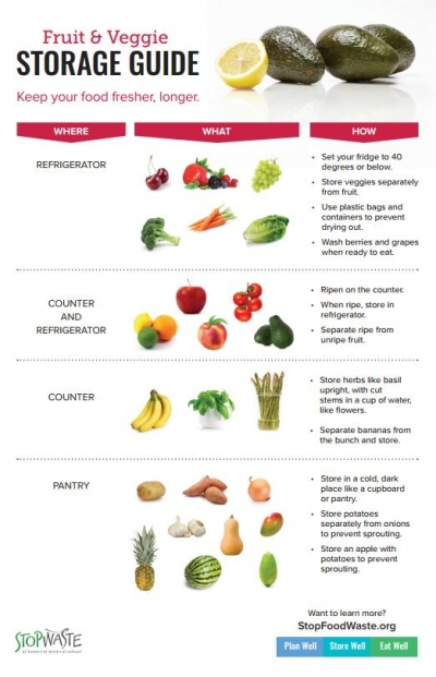 Fruit and veg storage graphic